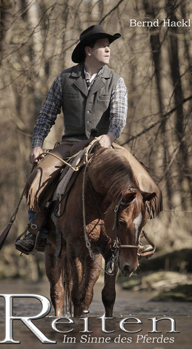 Bild Pferde Wissen