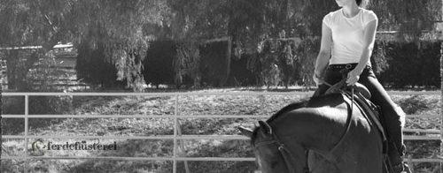 Durchsetzen Pferd