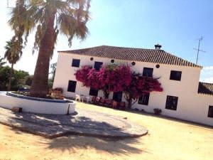 Hacienda_2-300x225
