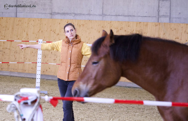 Petra-und-Nayla-im-RoundPen