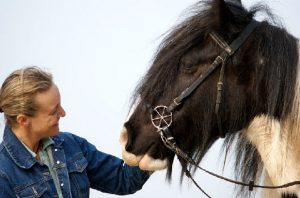 LG Zaum Pferdchen