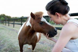 Saying Hi to the Pony