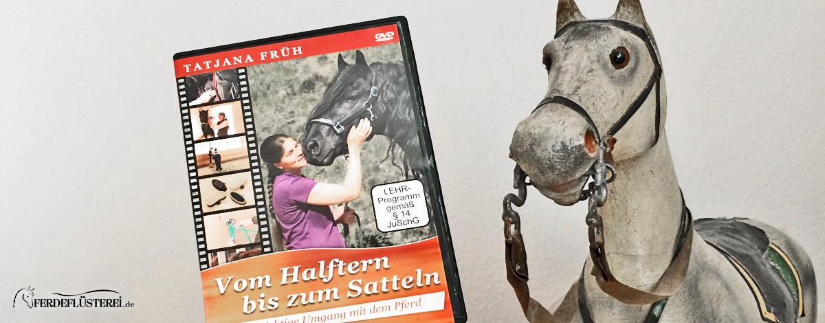 Halfter bis Sattel