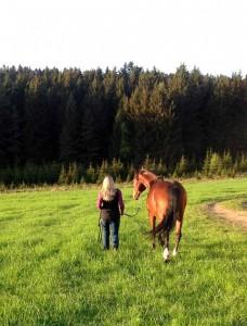 Pferd und Katrin
