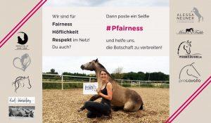 Pfairness Blogger Aktion