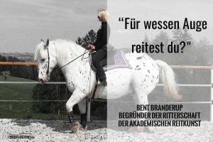 Daniela Schinko auf ihrem Pferd // Fotograf: Lukas Erhart-Fotografie