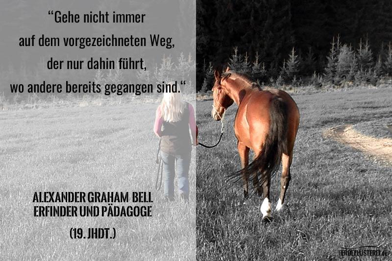Natuerlich Pferd Beitragsbild