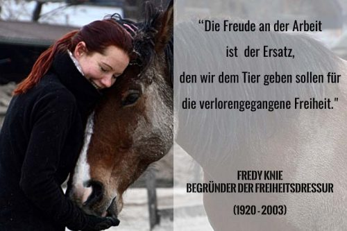 Vox Pferdeprofi Sandra Schneider