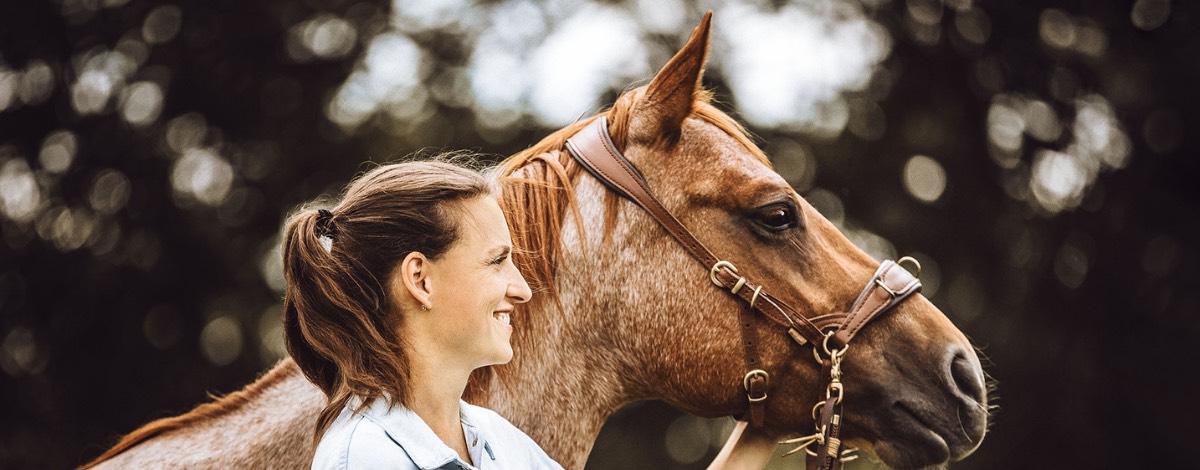PFerdemagnet Pferdeflüstern lernen