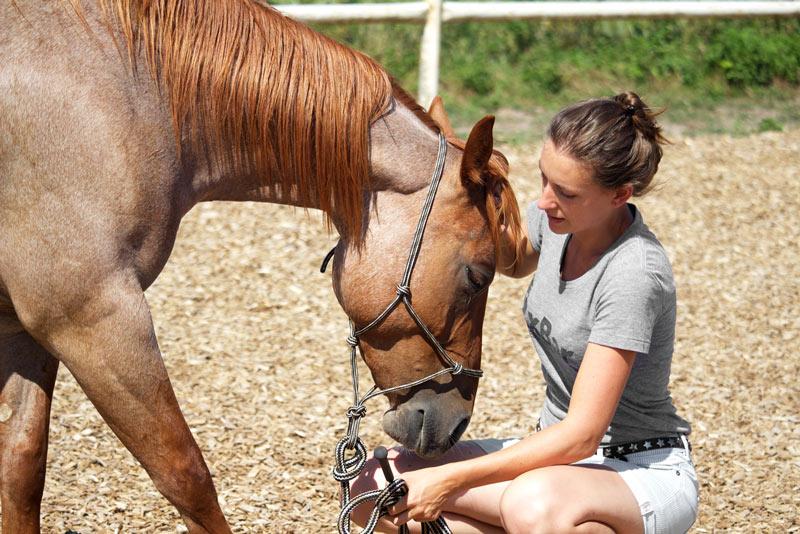 Entspannung mit dem Pferd