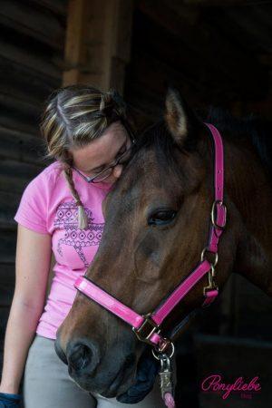 Kuscheln mit dem Pferd