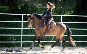 Kenzie Dysli reitet Doma Vaquera