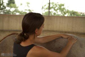 Massage mit Pferd