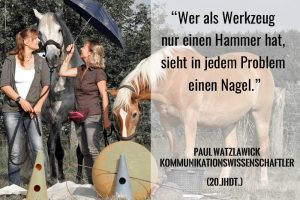 Wege zum Pferd - richtiges Pferdetraining