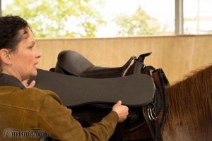 Baumloser Sattel Barefoot Pferd