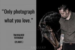 Philipp von Bassi - Pferdefotograf