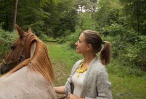 Im Gelände mit dem Pferd