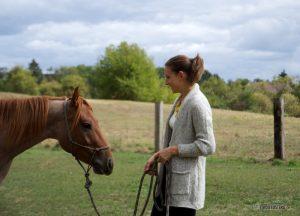 Pferd begrüßen