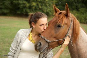 Pferde sind toll
