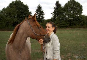Pferd kuschelt