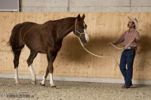 Alfonso Aguilar Horsemanship einfach