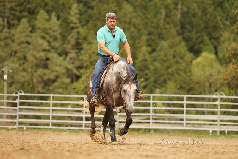 Pferdetrainer Bernd Hackl beim Reiten (Foto: Zauberwald)