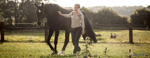 Pferdesprache lernen (Copyright: Susanne Hauk)