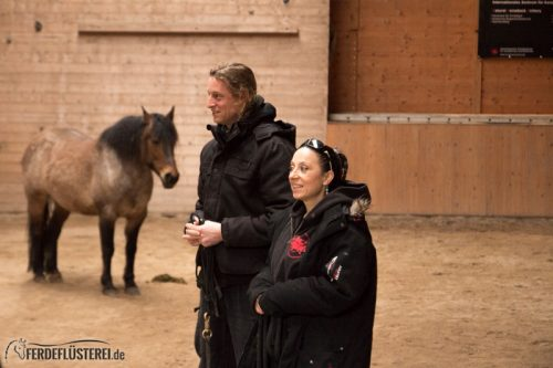 Horse Aikido Frei Reiten Bogenschiessen