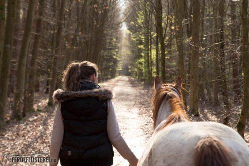 Veganes Pferdezubehör! Tiergerecht und pferdegerecht 2