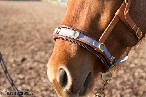 Veganes Pferdezubehör! Tiergerecht und pferdegerecht 1
