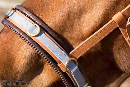 Veganes Pferdezubehör! Tiergerecht und pferdegerecht 9