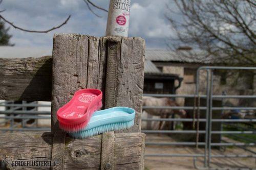 Pferd richtig Putzen: Magic Brush