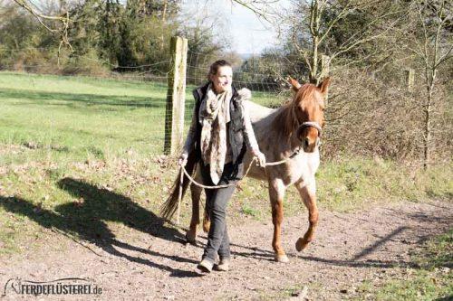 Veganes Pferdezubehör! Tiergerecht und pferdegerecht 16
