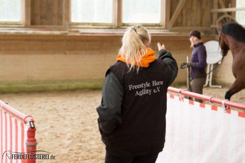 Horse Agility: Vertrauen, Kommunikation und Pferdetraining mit Spaßfaktor 10