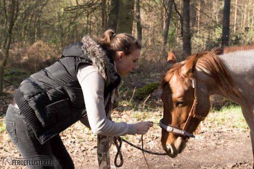 Veganes Pferdezubehör! Tiergerecht und pferdegerecht 13