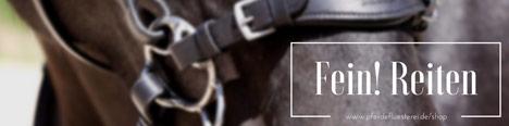 Pferdefreundlich & fein reiten