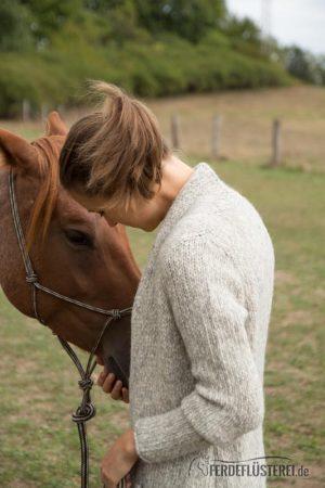 Partnerschaft mit deinem Pferd