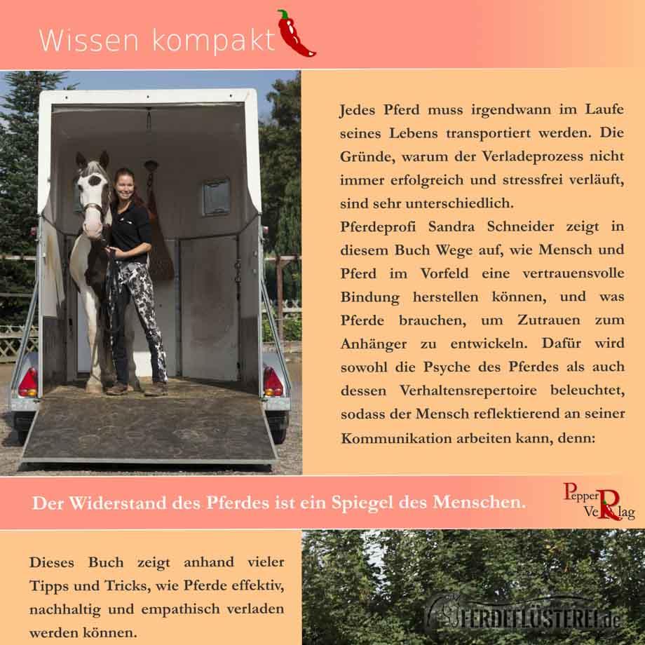 Übungsbuch Verladetraining - Sandra Schneider Vox Pferdeprofis - Rückseite PV-BUVT-X/2