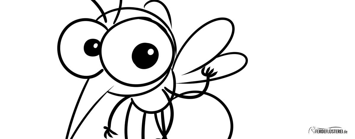 Sommerekzem Mücke