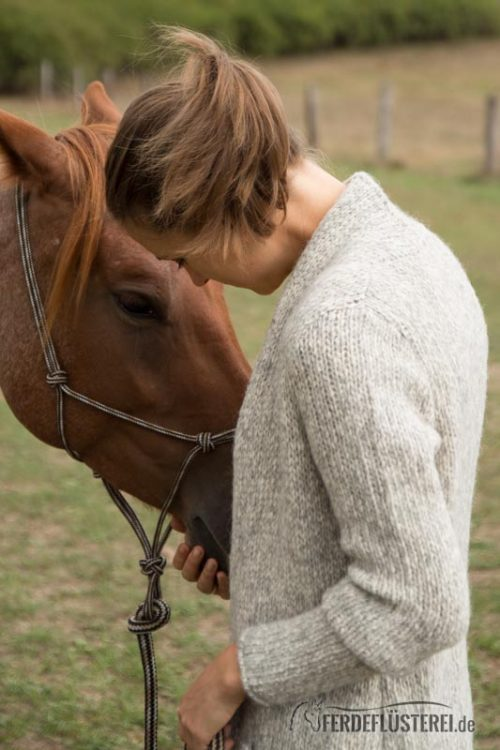 Carey Pferd kuscheln