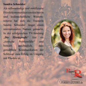 Sandra Schneider Pepper Verlag
