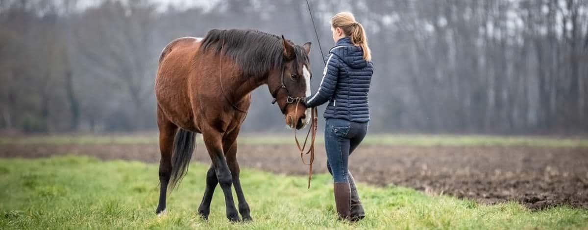 Hero Merkel mit Pferd (Bild: Caroline Burgert Photografie)