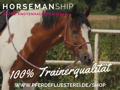 Horsemanship-400x300