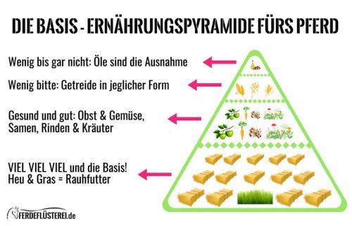 Ernährungs Pyramide Pferd