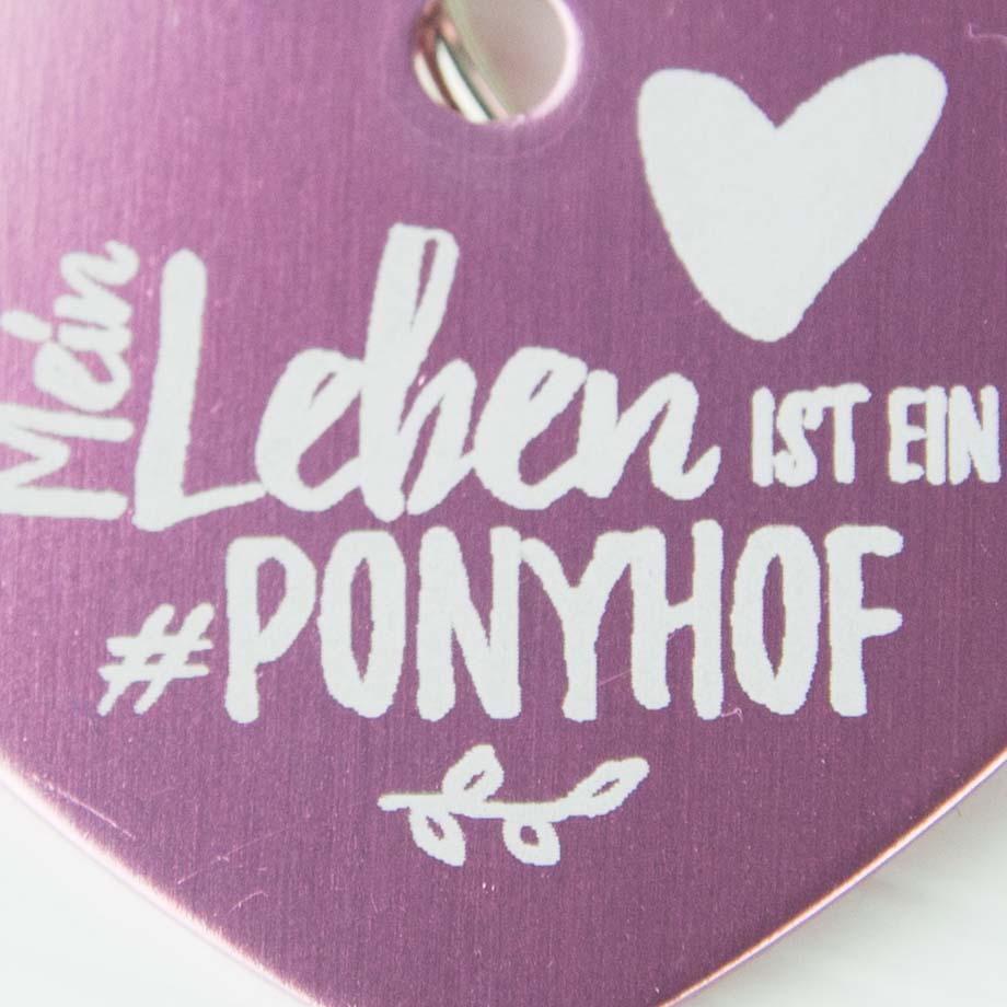 Soulhorse - Ponyhof Pixiedust