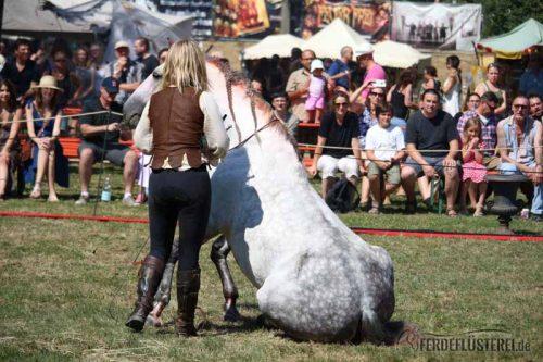 Hero Merkel Pferdetrainerin Pfernetzt