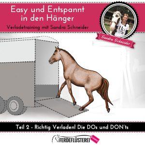 dvd-cover-verladetraining-quadrat-2