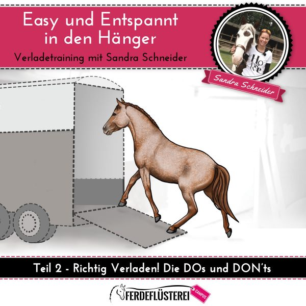 dvd-cover-verladetraining-quadrat-2