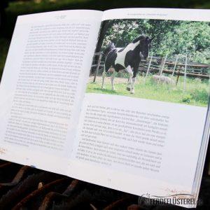 Crystal Verlag Buch Wissen Pferde Himmel und Erde Lesebeispiel