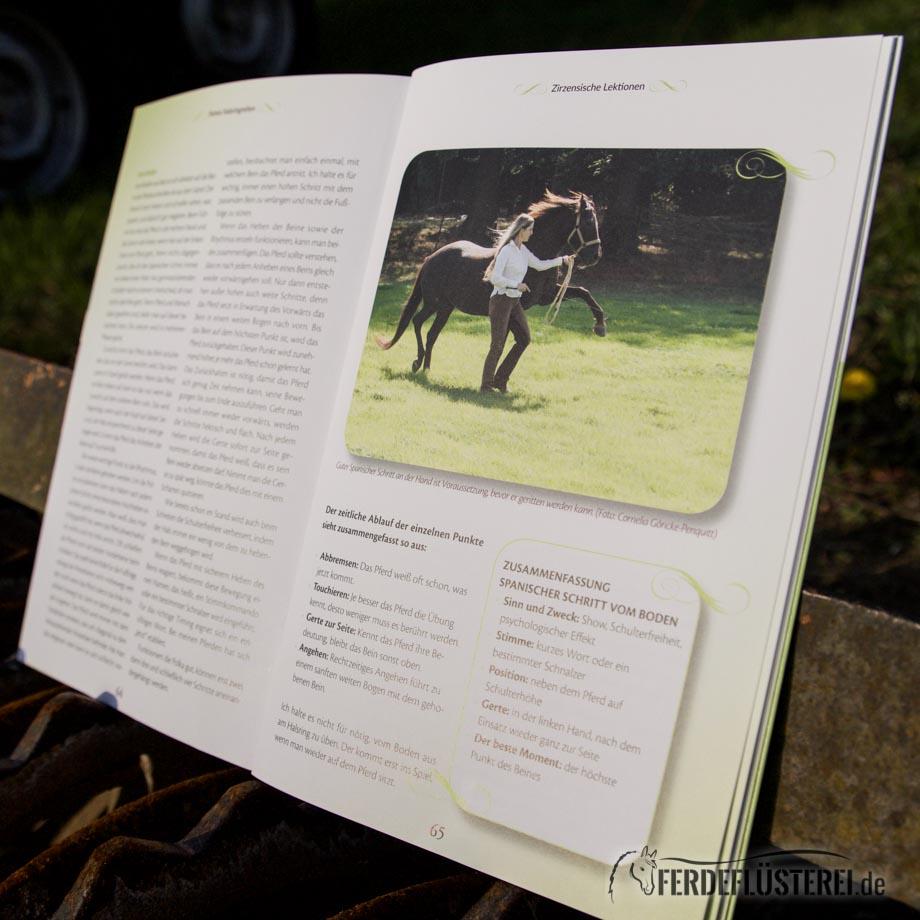 Crystal Verlag Buch Wissen Pferde Halsringreiten Penquitt Lesebeispiel